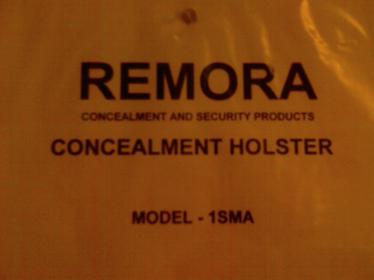 "Remora ""No-clip"" Holster Review-image_114.jpg"